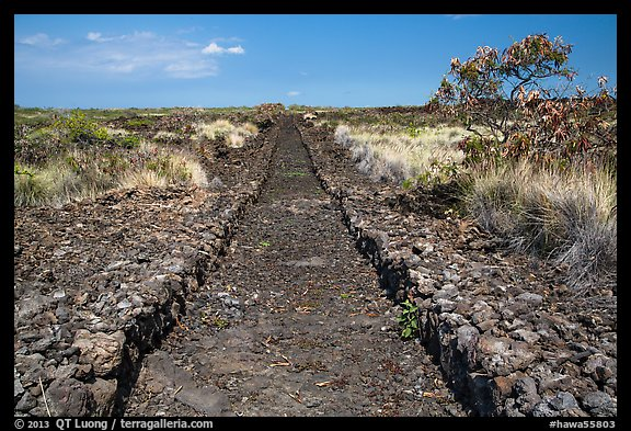 Ancient trail, Kaloko-Honokohau National Historical Park. Hawaii, USA (color)
