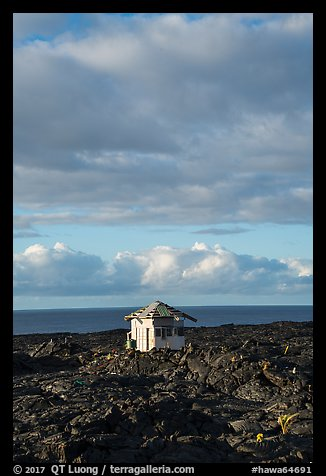 House, lava field, and Ocean, Kalapana. Big Island, Hawaii, USA (color)