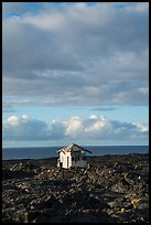 House, lava field, and Ocean, Kalapana. Big Island, Hawaii, USA ( color)