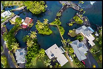 Aerial view of houses and Champagne Ponds. Big Island, Hawaii, USA ( color)