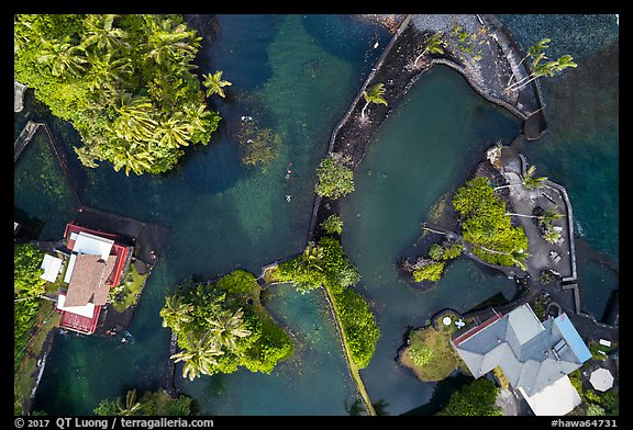 Aerial view of Champagne Ponds looking down. Big Island, Hawaii, USA (color)