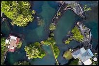 Aerial view of Champagne Ponds looking down. Big Island, Hawaii, USA ( color)