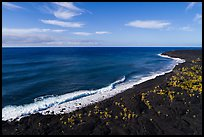 Aerial view of Kaimu Beach. Big Island, Hawaii, USA ( color)