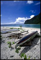 Traditional polynesian canoes near the Asaga Strait, Ofu Island. American Samoa (color)