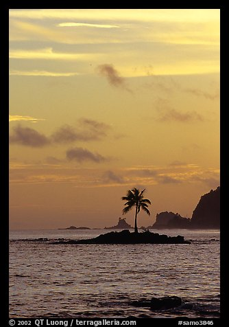 Coconut tree on islet, Leone Bay, sunset. Tutuila, American Samoa (color)