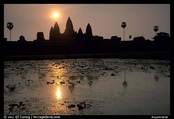 Angkor Wat reflected in pond at sunrise. Angkor, Cambodia