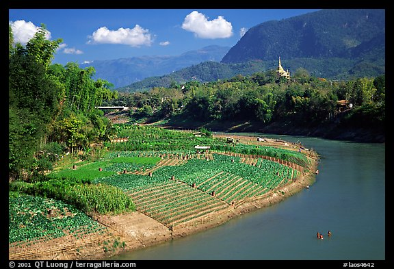 Fields on the banks of the Nam Khan river. Luang Prabang, Laos (color)