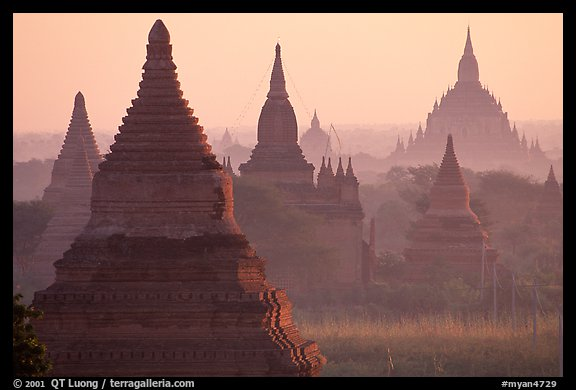 View over temples from Mingalazedi. Bagan, Myanmar (color)