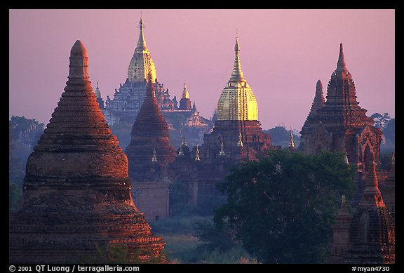 Innumerable temples seen from Mingalazedi. Bagan, Myanmar