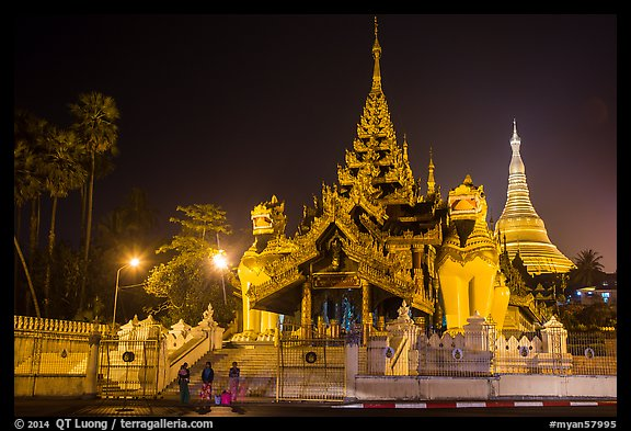 Southern gate guarded by two leogryphs and Main Stupa at night, Shwedagon Pagoda. Yangon, Myanmar (color)