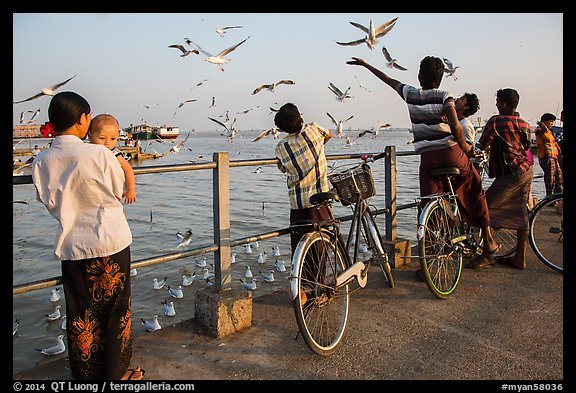 Yangon River pier with seagulls fed by visitors. Yangon, Myanmar (color)