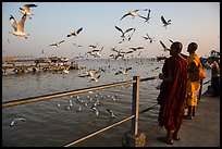 Seagulls flying as monks feed them from Botataung pier. Yangon, Myanmar ( color)