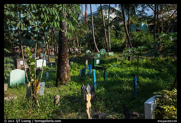 Tombs and vegetation in Muslim Cemetery. Yangon, Myanmar (color)