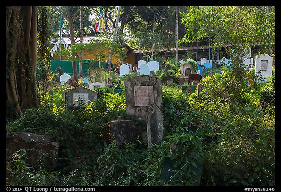 Graves and vegetation in Muslim Cemetery. Yangon, Myanmar (color)