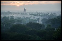 Bagan tower and sun above morning mist. Bagan, Myanmar ( color)