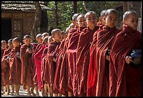 Novices lining up with alms bowls, Nyaung U. Bagan, Myanmar ( color)
