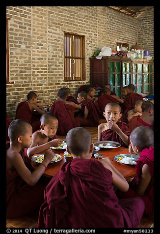 Young Buddhist monks in dining room. Bagan, Myanmar (color)
