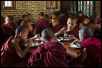 Novices eat lunch, last meal of the day. Bagan, Myanmar ( color)
