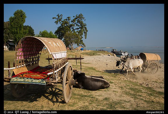 Ox carts on shore of Irrawaddy River, Mingun. Myanmar (color)