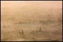 Pagodas and tree ridges in mist as seen from Mandalay Hill. Mandalay, Myanmar ( color)