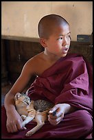 Novice petting cat, Shweyanpyay Monastery, Nyaung Shwe. Inle Lake, Myanmar ( color)