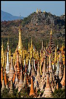 Jungle of stupas in various srages of disrepair, Indein. Inle Lake, Myanmar ( color)
