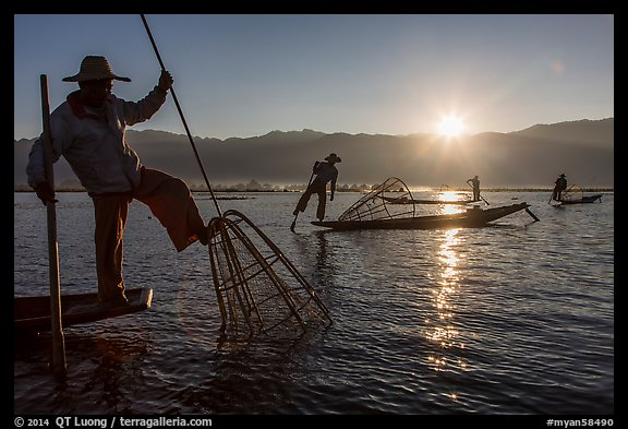 Intha fisherman using spear sticking through the top of basket to expose fish. Inle Lake, Myanmar (color)