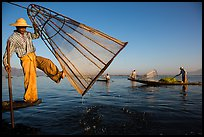 Intha fisherman lifting conical net basket. Inle Lake, Myanmar ( color)