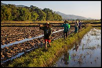 Villagers returning from a day of work in the fields, Maing Thauk Village. Inle Lake, Myanmar ( color)