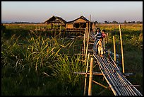 Family walking out of stilt house on precarious bridge. Inle Lake, Myanmar ( color)