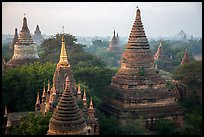 Dense array of ancient temples. Bagan, Myanmar ( color)