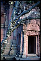 Vegetation invades khmer-style temple. Muang Boran, Thailand (color)