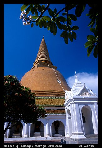 Phra Pathom Chedi, the tallest buddhist monument in the world. Nakhon Pathom, Thailand (color)