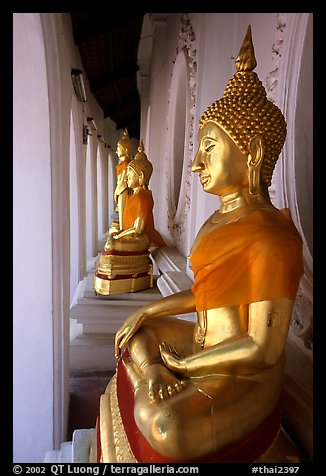 Buddhas images in gallery, Phra Pathom Wat. Nakhon Pathom, Thailand (color)