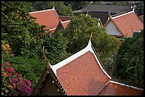 Thai-style temple rooftops emerging from trees. Bangkok, Thailand