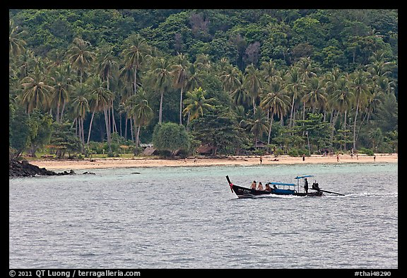 Longtail boat sailing in front of palm-fringed beach, Phi-Phi island. Krabi Province, Thailand (color)