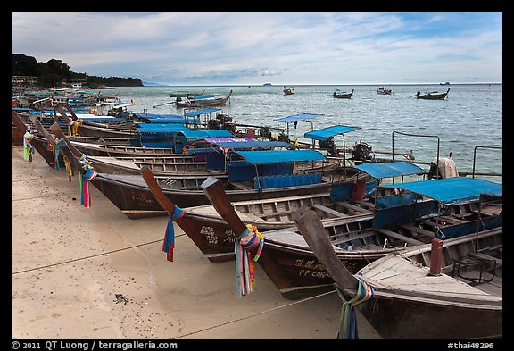 Longtail boats lined up, Ao Ton Sai, Ko Phi Phi. Krabi Province, Thailand (color)