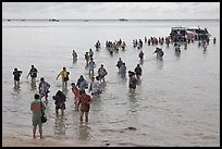 Crowd walking in water, Ko Phi-Phi island. Krabi Province, Thailand (color)