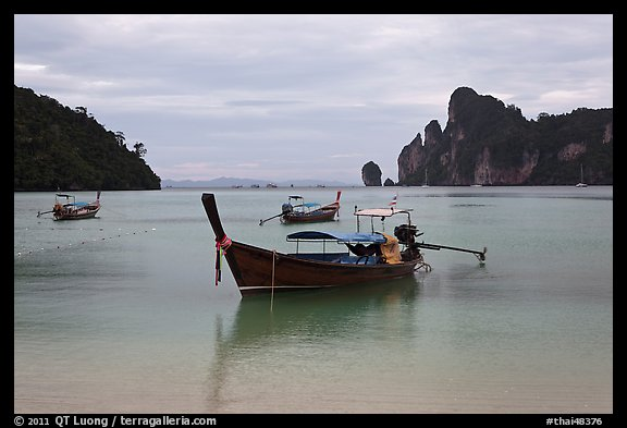 Long Tail boats moored in bay, early morning, Ko Phi Phi. Krabi Province, Thailand (color)