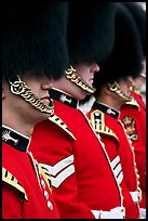 Guards with tall bearskin hat and red tunic standing in a row. London, England, United Kingdom