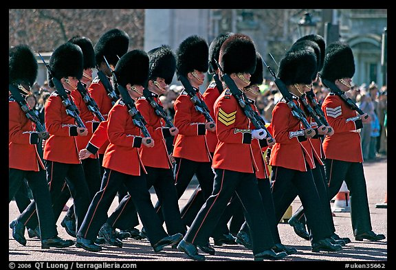 Guards with tall bearskin hats  marching near Buckingham Palace. London, England, United Kingdom (color)
