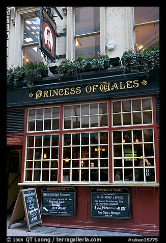 Pub the Princess of Wales. London, England, United Kingdom (color)