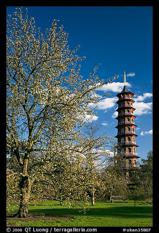 Great Pagoda by William Chambers. Kew Royal Botanical Gardens,  London, England, United Kingdom (color)