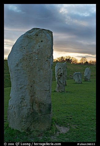 Megaliths forming part of a 348-meter diameter stone circle, sunset, Avebury, Wiltshire. England, United Kingdom (color)