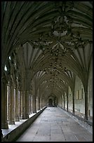 Cloister gallery, Canterbury Cathedral. Canterbury,  Kent, England, United Kingdom ( color)
