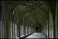 Great Cloister gallery, Canterbury Cathedral. Canterbury,  Kent, England, United Kingdom ( color)