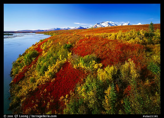 Susitna River and autumn colors on the tundra. Alaska, USA (color)