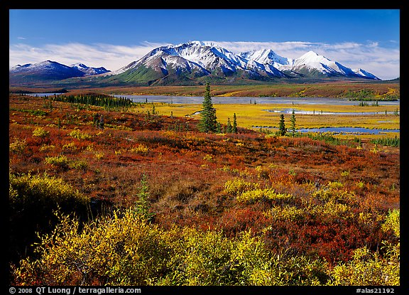 Tundra and snowy mountains. Alaska, USA (color)