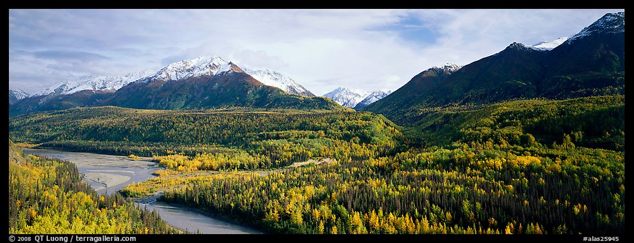 Autumn landscape with river, aspen forest, and snowy mountains. Alaska, USA (color)