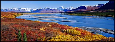 Tundra autumn scenery with wide river and mountains. Alaska, USA (Panoramic color)